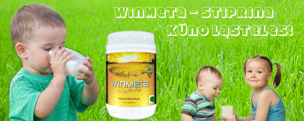 winmeta1